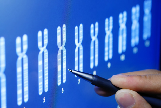 DNA could illuminate Islam's lineage
