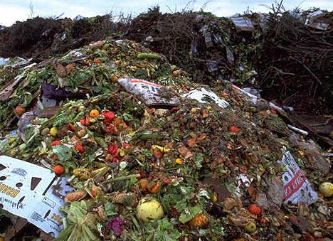 Food waste / Source: cflounge.blogspot.com