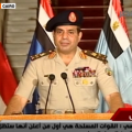 Egyptian Military coup against Morsi