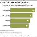 Muslim Publics Share Concerns about Extremist Groups