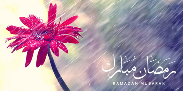 RAMADAN_RAIN_RED_FLOWER