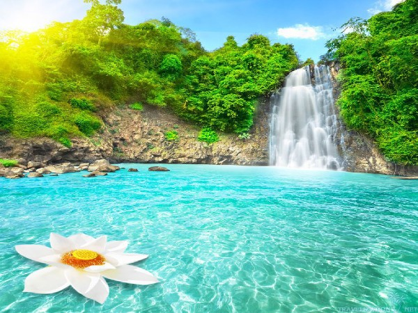 nature-paradise